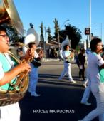 Fiesta de la Promesa 2018. Solemne Procesión por las calles céntricas de Maipú, el domingo 18, a partir de las 16 horas (17)
