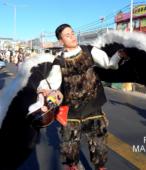 Fiesta de la Promesa 2018. Solemne Procesión por las calles céntricas de Maipú, el domingo 18, a partir de las 16 horas (2)