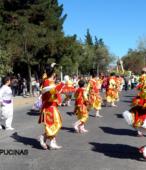 Fiesta de la Promesa 2018. Solemne Procesión por las calles céntricas de Maipú, el domingo 18, a partir de las 16 horas (21)