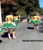 Fiesta de la Promesa 2018. Solemne Procesión por las calles céntricas de Maipú, el domingo 18, a partir de las 16 horas (23)